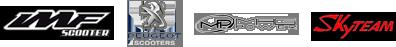 logo imf riej skyteam